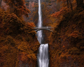 Falls of Rivendell, Multnomah, Waterfall, Columbia River Gorge, Leaves, Oregon, Pacific Northwest, - Travel Photography, Print, Wall Art