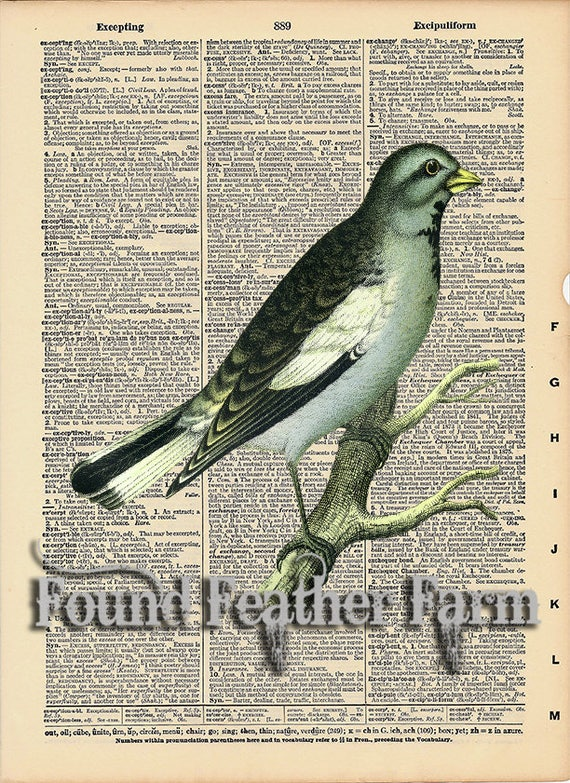 """Vintage Antique Dictionary Page with Antique Print """"Blue Bird"""""""