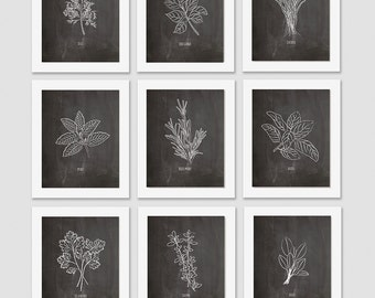 herb art print set, kitchen art, herb print, kitchen decor, dining room art, botanical print, herb illustration, gift for a foodie, food art