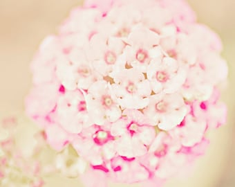 Shabby chic flowers - 8x10 photograph -  home decor - nursery art - vintage - romantic - wall art - wedding gift