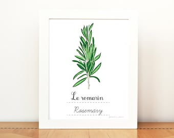 Kitchen Art Rosemary French Herbs print - 8x10 art print - Green Home decor Eco friendly Food Foodie Culinary Gourmet cook chef