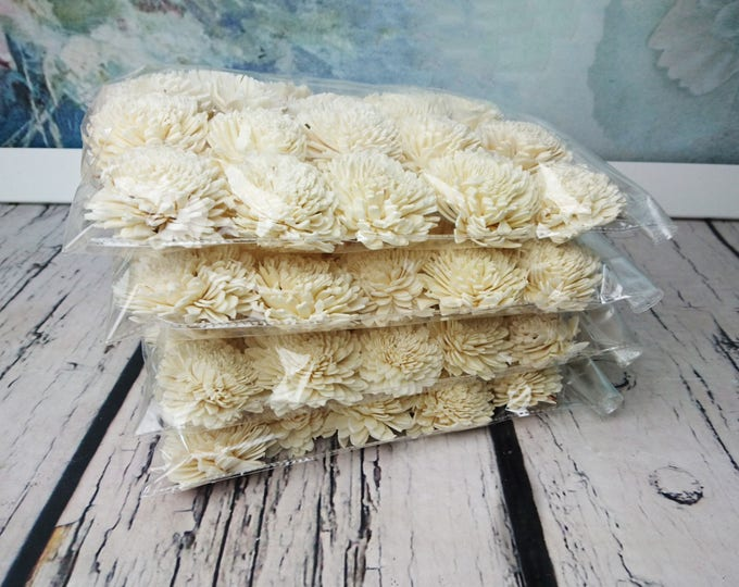 100 Sola Flowers Wedding decor diy bouquet floral supply natural rustic zinnia 6cm 2 23⁄64""