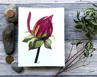 original realistic peony flower bud watercolor art painting wall art pink delicate floral botanical illustration small aquarelle