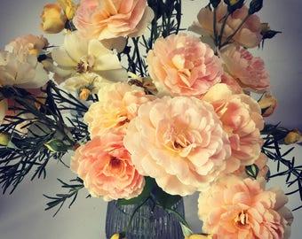 Miniature Still Life - Orange Roses