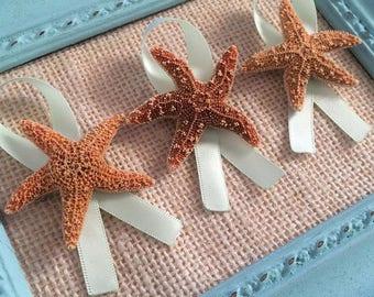 Starfish Boutonnieres, Starfish Pin, Men's Boutonnieres, Beach boutonnieres, Beach wedding, Beach Wedding Boutonnieres, Beach Boutonniere