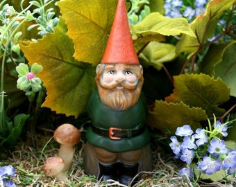 Garden Gnome - Customized Male Gnome - Personalized Mr For Your Gnomes Garden