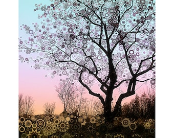 Winter Star Tree 2 ... sunset apple tree and turquoise sky fine art print