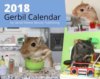 2018 Wall Calendar by Gerbil Meets Mouse Publishing - FREE Shipping