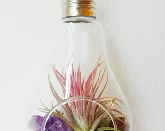 DIY TERRARIUM KIT - with gemstone and air plant // Lightbulb Plant Hanger // Tillandsia // Glass Hanger // Hanging Planter // Crystal Quartz