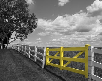 Black White Yellow Home Decor Wall Pictures, Country Wall Decor Matted Picture