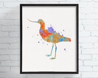 Watercolor Avocet, Avocet Art Print, Avocet Painting, Seashore Bird, Bird Wall Art, Bird Art, Bird Print, Bird Painting, Watercolor Bird Art
