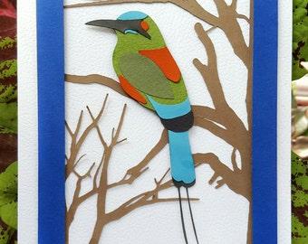 Handmade Torogoz Card