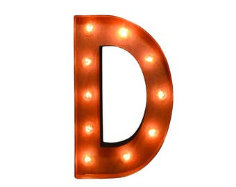 Iconics Marquee Light: Letter D