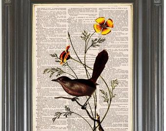 Brown bird print on dictionary or music page Orange Dictionary art print Wall decor Sheet music Digital art Home decor No. 613