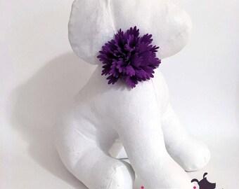 Purple Aster Flower Collar Accessory