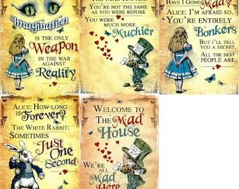 Set of 5 Fridge magnets - each one an Alice in Wonderland refrigerator magnet - non scratch vinyl