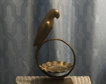 Parrot Perched on Dish