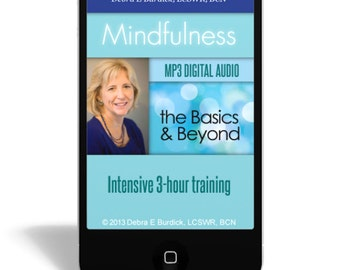 Mindfulness - The Basics and Beyond Intensive 3-hour training