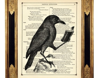 Raven Crow reading book Bird Dictionary Art Halloween  - Vintage Victorian Book Page Art Print Steampunk