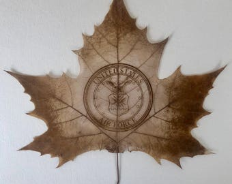 United States Air Force Leaf, USAF Sculpture, Seal of the Air Force Art, Carved by hand, Enlistment Gift