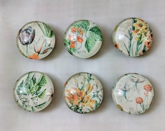 Magnets | Floral design | Set of 6