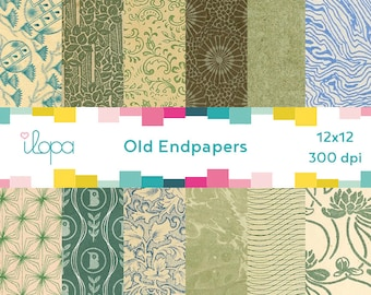 Digital Old Pattern Paper Endpaper 300 dpi 12x12