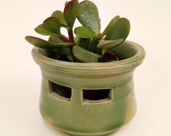 Helmet-shaped Cactus planter