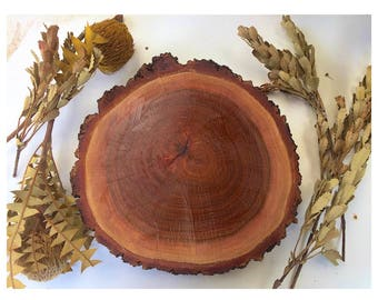 Wooden Slice, wooden rounds, rustic, Wooden table centrepiece, wooden cake base, Party, Wedding, Wooden slice with bark, rustic wedding, app