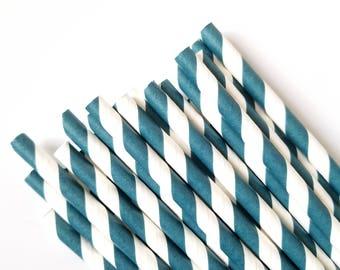 Navy Blue Striped Paper Straws - Paper Straws - Set of 25 - Birthday Party Decor - Straws - Boy's Birthday