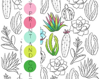 Adult coloring page, succulent coloring page, cactus coloring, plants coloring, nature coloring, instant download, printable coloring page