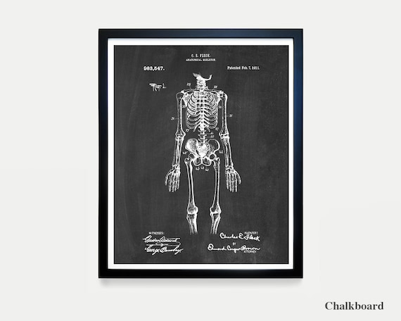Anatomical Skeleton Patent Art - Skeleton Poster - Skeleton - Anatomy Poster - Anatomy Art - Bones - Medical Art - Spine - Vertibrae