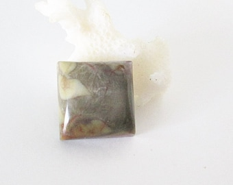 Australian Dragons Blood Jasper 13mm Square Cabochon 10.50cts