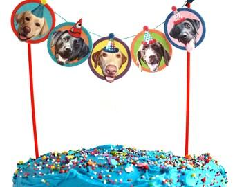 Labrador Dogs Birthday Cake Garland - photo reproductions on felt - funny labrador retriever portraits birthday party decor