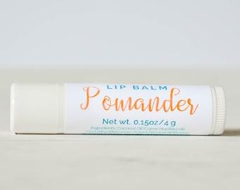 Orange Clove Lip Balm - All Natural Lip Balm - Pomander Lip Balm - Natural Lip Gloss - Sweet Lip Balm - Orange Lip Balm - Clove Lip Butter
