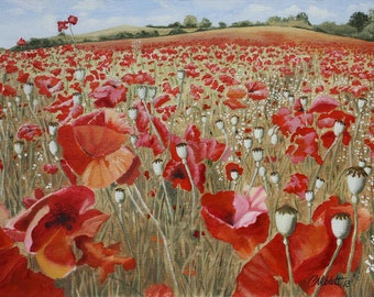 Sunshine and Poppy field, Bewdley, Worcestershire
