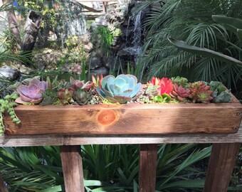"""Succulent arrangement  garden  in long Rustic wood planter boxes 20""""-colorful live succulent plants. Floral wedding decor drought tolerant."""