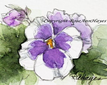 Purple Pansy Viola Original Watercolor Painting Flower Miniature Floral Garden Pansies