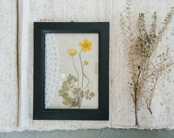 Botanical art buttercups wild-herbarium under glass-botanical framework-medicinal plants-Herbarium-mother's Day-gift house