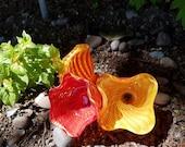 Orange, Red and Yellow Gl...
