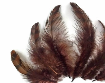 Hen Feathers, 10 Pieces - BROWN Dyed Grizzly Hen Saddle Feather : 4160