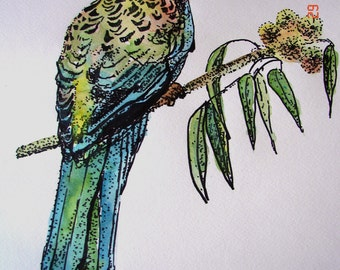 Australian Birds Art Gift Parrot original Watercolour Ink pen Painting  childs nursery room decor Australian Rosella