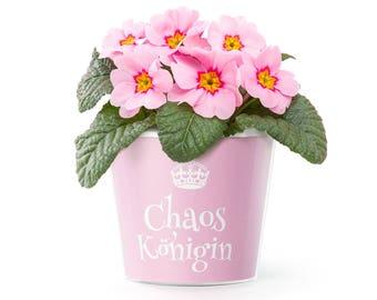 Chaoskönigin Blumentopf (ø16cm)   Lustiges Geschenk für Arbeitskollegin oder Freundin