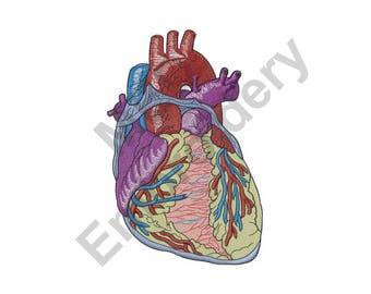 Heart - Machine Embroidery Design, Anatomical Heart