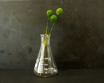 Vintage Erlenmeyer Flask, Pyrex 250ml (c.1980s) - Unique Vases, Halloween Decor, Mad Science Party