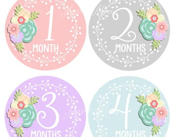 Baby Girl Monthly Stickers, Baby Girl Month Stickers, Bodysuit, Floral, Roses, Pink, Gray, Grey, Lavender, Blue Nursery Decor