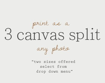 Choose any photo as a 3 CANVAS Split