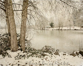 Landscape Photography - Winter Freeze - frozen lake snowy ground trees - winter watescape home decor - office decor