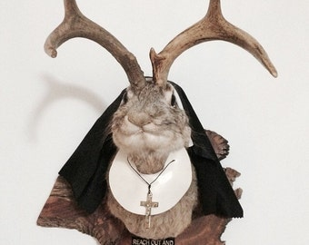Taxidermy Nun Jackalope - Depeche Mode Nunny Bunny