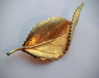 Vintage gold tone curled leaf brooch, mid century brooch, leaf brooch