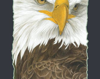 Silent Force Portrait of American Bald Eagle Limited Edition Giclee' Print